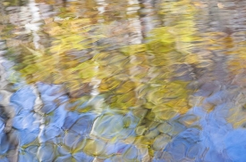 Water-Colors - 3H_452312