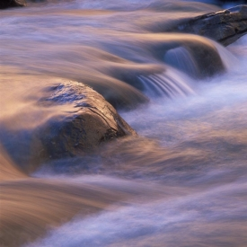River-Whispers - 1S_57005
