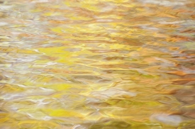 Water-Colors - 3H_454412